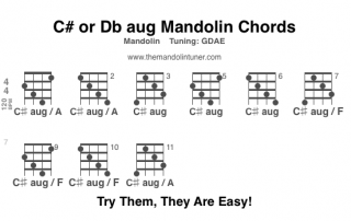 C# or Db mandolin chord chart