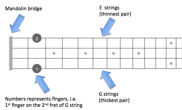 D Mandolin Chords with fingered diagrams - theMandolinTuner