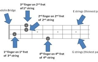 B chord fretboard diagram explained