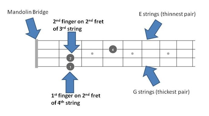 A Mandolin Chords online guide with 72 diagrams- theMandolinTuner