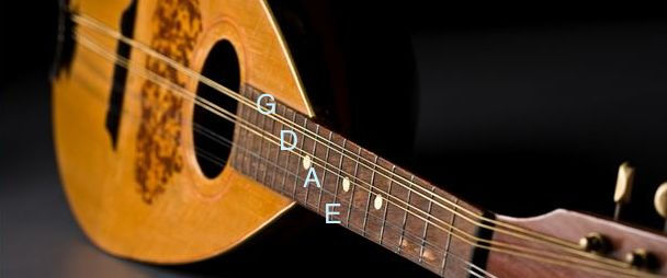 tune your mandolin mandolin open strings