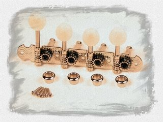 Mandolin Parts, Illustrated (F-type) - theMandolinTuner