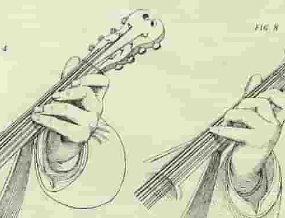 Mandolin Left Hand Techniques for Beginners