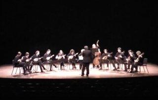 het consort performs mozart