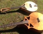 Richard Morgan mandola copy