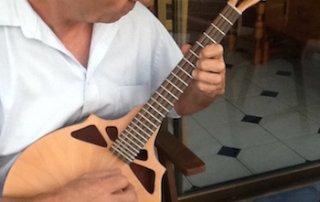 Richard Morgan Jazz Mandola