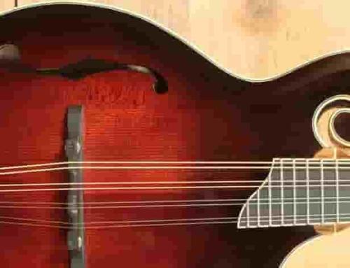 Selecting a mandolin – Wood