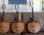 Mandolins from Richard Morgan