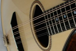 mandolin sound hole