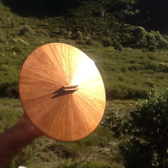 Timber cone experiment resonator soundboard 2