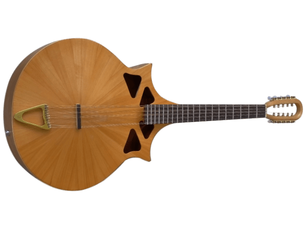 Hair Loss – A Luthiers Journey #8