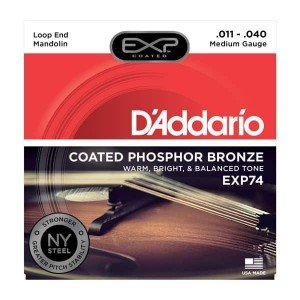Mandolin Accessories D Addario Strings