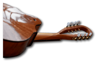 Radiant Instrument Necks