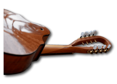 Radiant Instrument Necks