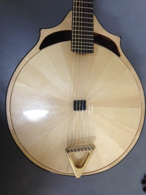 Thank god for luggage handlers • the Mandolin Tuner
